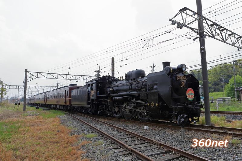 秩父鉄道 SL金尾山つつじ祭り号