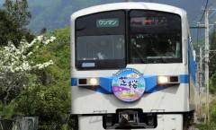 秩父鉄道 急行芝桜号